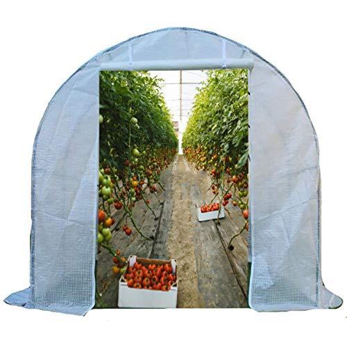 Invernadero Túnel De Invernadero De Tomate Al Aire Libre De Invierno, Tienda De Cultivo De Flores De Plantas Extragrandes Sin Cita, para Jardín, Patio, Césped, Blanco (Size : 600×200×200cm)