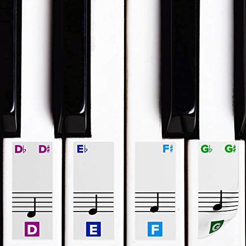 Color Piano Stickers for Keys w/Complete Printed Notes on Grand Staff - Removable w/Double Layer Coating for 49/61 / 76/88 Keyboards
