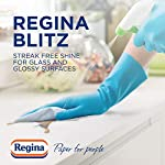 Regina Blitz Household Towel, 8 Rolls, 560 Super-Sized Sheets, Triple Layered Strength 6