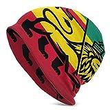Cute Bi Gorro de Punto con Bandera de Lion Rastafari, Gorro Unisex, Gorro de Punto Suave y Ligero, Gorro Elegante para Hombre, Gorro de Calavera para otoño, Actividades al Aire Libre, Invierno, Negro