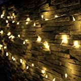 LED String Lights, Decorative Mini LED Lights Indoor and Outdoor, Plug...