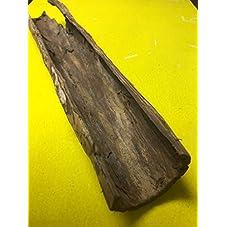 Seemandelbaum Halbe Rindenröhre ca. Ø 4cm x 20 cm Lang