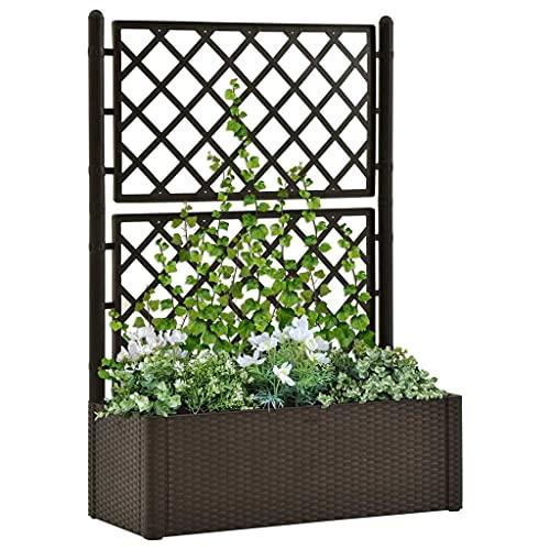 vidaXL Arriate con Enrejado y Sistema de Riego Automático Pérgola Jardinera Macetero Flores Bandeja Plantas Jardín Porche Decoración Patio Moca