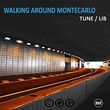 Walking Around Montecarlo