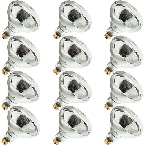 Industrial Performance 250R40/1, 250 Watt, 120 Volt, R40 Glass Size, 5000 Hour Life, Medium Screw (E26) Base,Infrared Reflector Heat Lamp Light Bulb (12 Bulbs)