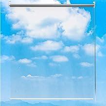 Roller Blinds Transparent Plastic Clear for Kitchen Bathroom, 80cm/100cm Wide, 180cm/190cm/200cm/220cm/250cm Height Option...