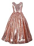 Fairy Dolls Girl Sequins Princess Ball Gown Dress (Copper Gold, 7-8 Years)