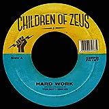 Hard Work [Vinyl LP]