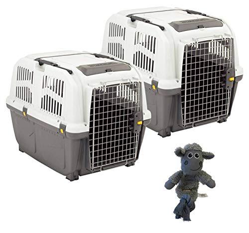 PETGARD 2er Sparpaket Transportbox SKUDO 5 IATA mit gratis Hundespielzeug 79 x 58 x 65 cm