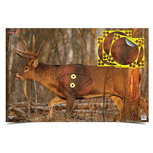 paper animal archery targets - 2