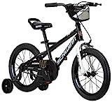 10 Best 16 inch Bikes