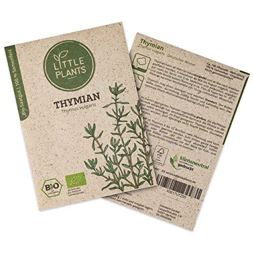 Little Plants BIO-Thymiansamen (Thymus vulgaris) Deutscher Winter | BIO-Kräutersamen | Nachhaltige Verpackung aus Graspapier | Kräuter-Samen | BIO-Saatgut für ca. 700 Thymian-Pflanzen