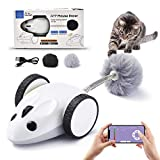 Arild Interactive Mouse Robotic Cat Toys,APP Remote Controlled Automatic USB Charging 360 Degree Electric Cat Toys,Automatic Feathers Toys for Cats/Kitten,Build-in Spinning Led Light