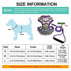 Forestpaw Multi-Colored Stylish Dog Walking Vest Harness and Leash Set- Vintage Tribal Pattern No Pull Dog Harness for Walking Small Medium Dogs,Purple,M