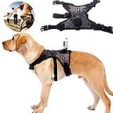 Arnés para Perros Correa para El Pecho Sin Tirón Arnés para Mascotas Cinturón para Mascotas Chaleco para Mascotas para Cámara Acción con Montaje Gopro, Perspectiva para Perros con Alta Estabilidad,L