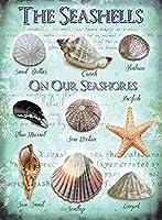 ビーチ貝殻ブリキサインヴィンテージノベルティ面白い鉄の絵の具金属板