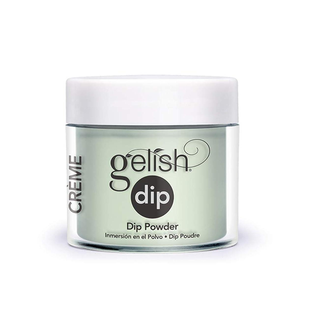 膨らみ背が高い乱れHarmony Gelish - Acrylic Dip Powder - Mint Chocolate Chip - 23g / 0.8oz