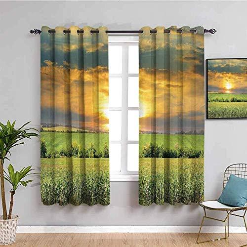 ZLYYH Cortinas De Salón Puesta de sol cielo verde hierba 117x160cm Cortinas extra largas Tratamientos de ventana para paneles y cortinas de sala de estar, cortinas extra largas de ojal clásico