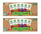 Stretch Island Fruit Leather Snacks Variety Pack - 0.5 Ounce Strips - 2 Packs of 48
