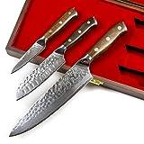 Stallion Cuchillo de Damasco Ironwood -Juego de Cuchillos: Cuchillo de Chef 20 cm, Cuchillo Santoku 12,5 cm, pequeño cuchillo 9 cm de Acero damasceno en una Elegante Caja de Regalo