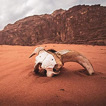 Sand and skulls