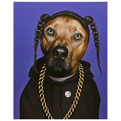 """Empire Art Direct Pets Rock Rap Graphic Wrapped Canvas Dog Wall Art, 20"""" x 16"""" x 2"""", Ready to Hang"""