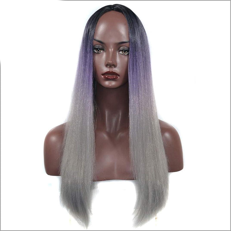 ピニオン抑制ルーチンIsikawan コスプレパーティードレスの女性用ナチュラルウィッグブラックパープルグレーのロングストレートヘアミドルパート (色 : Black purple gray, サイズ : 60cm)
