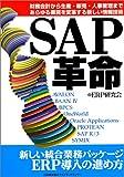 SAP革命―財務会計から生産・販売・人事管理まであらゆる業務を変革する新しい情報技術