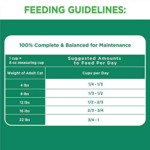 Iams Proactive Health Healthy Senior Dry Cat Food, Chicken Flavor