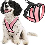 Gooby Comfort X Head in Harness - Pink, Small - No Pull Small Dog...