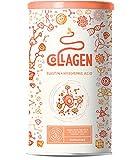Collagene con elastina e acido ialuronico | Peptidi di collagene idrolizzato di tipo I, II e III | Puro | Senza additivi | Non aromatizzato | 450 grammi polvere