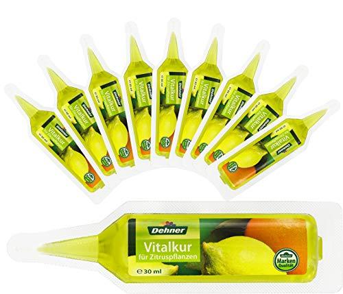 Dehner Zitruspflanzen Vitalkur, flüssig, 10 Stück, je 30 ml