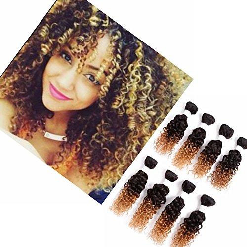 Eunice Brazilian Human Hair Extension Kinky Curly 8 Bündel Brasilianische Menschliche Haare Ombre Brown Virgin Jerry Curly Haar(8 zoll(jerry curly), 1B 27)