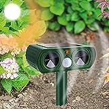 Best Ultrasonic Pest Repeller Birds - Cuzloma Cat Repellent Pest Repeller Solar Powered Bird Review