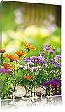 Blumenwiese, Format: 80x60 auf Leinwand, XXL riesige Bilder