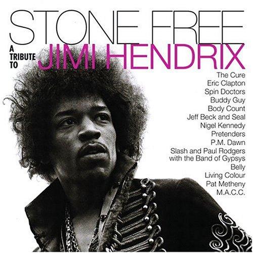 Stone Free:Tribute to Jimi