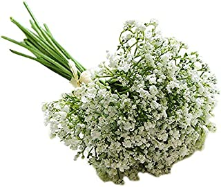 Xigeapg White Plastic Hand-Painted Starry Night Primrose Artificial Flower Home Decoration Ornaments Photography Props Manual DIY