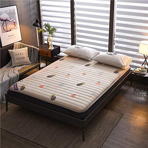 ZLJ Not-slip Japanese Sleeping Pad roll Up Camping Mattress Floor Lounger tatami Folding Futon Mattress Pad 100x200cm(39x79inch)