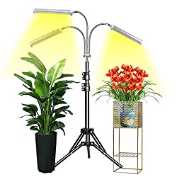 Floor Standing Grow Light