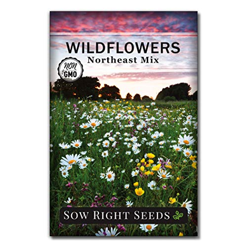 Sow Right Seeds - Wildflowers Seeds to Plant in Northeast - Full Instructions...