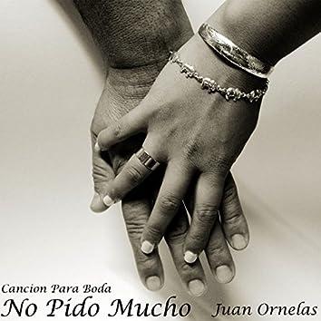 No Pido Mucho - Single