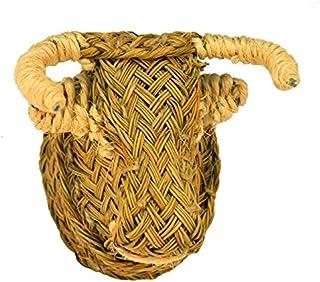 Cabeza de Toro de Esparto - BicocaWeb