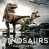 Dinosaur Calendar 2022: 16-Month Calendar, Cute Gift Idea For Kids