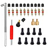 Tire Valve Stem Tool Remover & Installation Set- 10pcs Tire Snap in Short Rubber TR412 Valve Stem with Valve Stem Cores,EASILY REPLACE Your Old Tubeless Valve Stems,Single Head Tire Valve Core Remover
