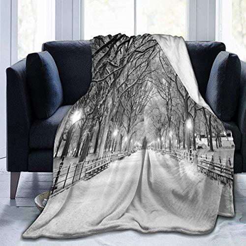 Manta de franela con vista de Central Park en invierno, con árboles nevados y el pasillo como colcha/colcha/funda de cama, suave, ligera, cálida y acogedora 40 x 50 pulgadas para niños y niñas