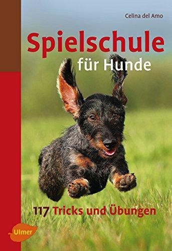 Spielschule für Hunde: 117 Tricks und Übungen