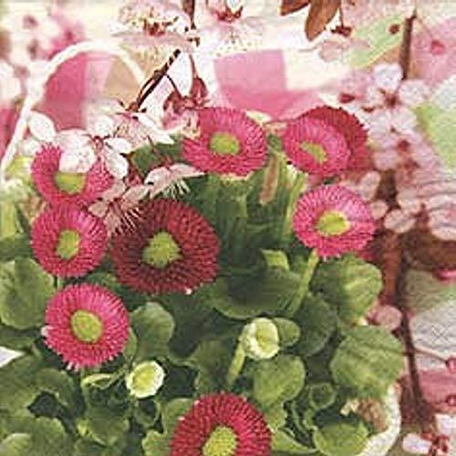 Linoows Serviettes 20 Pièce, Maßliebchen Bellis Et Apfelblüten Un Doux Rêve 33x33 CM