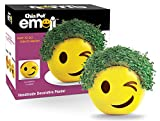 Chia Pet Emoji Winky with Seed Pack, Decorative Pottery Planter, Easy to Do and Fun to Grow, Novelty Gift, Perfect for Any Occasion