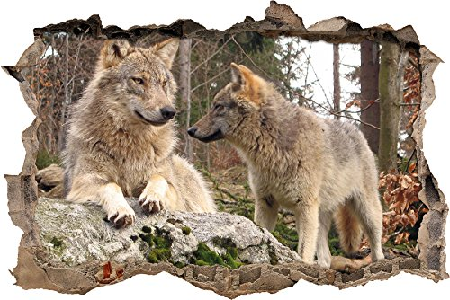 Stil.Zeit Wölfe im Wald Wanddurchbruch im 3D-Look, Wand- oder Türaufkleber Format: 92x62cm, Wandsticker, Wandtattoo, Wanddekoration