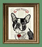 Boston Terrier Gifts. Boston Terrier Society.